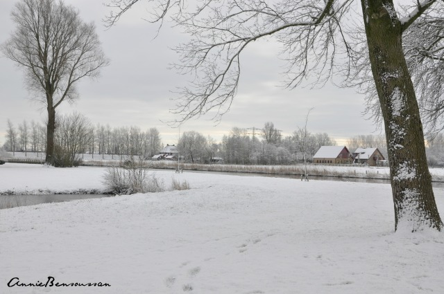 snow in the netherlands 1