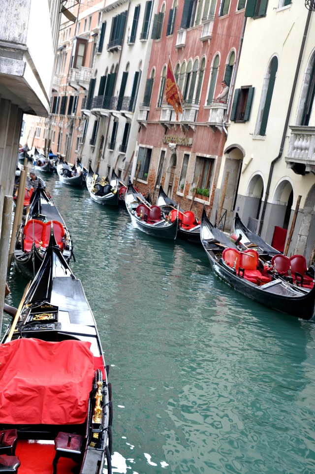 Venice 8
